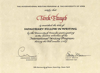 Honorary Fellow in Writing